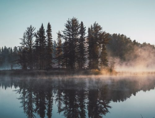 You Can Rely On God